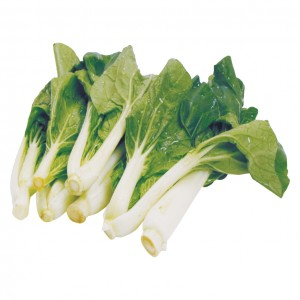 白菜苗 0.9-1.1lbs-0