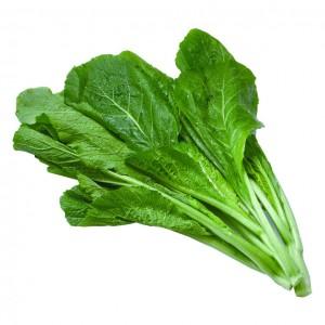 小芥菜 1.2-1.4lbs-0