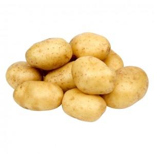 白土豆 0.9-1.1lbs-0