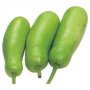 长瓜 2.2-2.5lbs-0