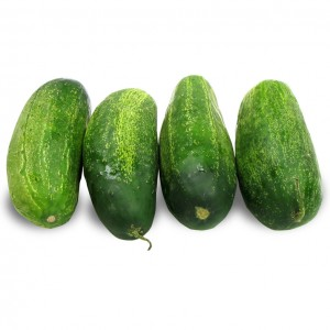 小黄瓜 1.4-1.6lbs-0