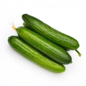 印度小黄瓜 0.85-1.05lbs-0
