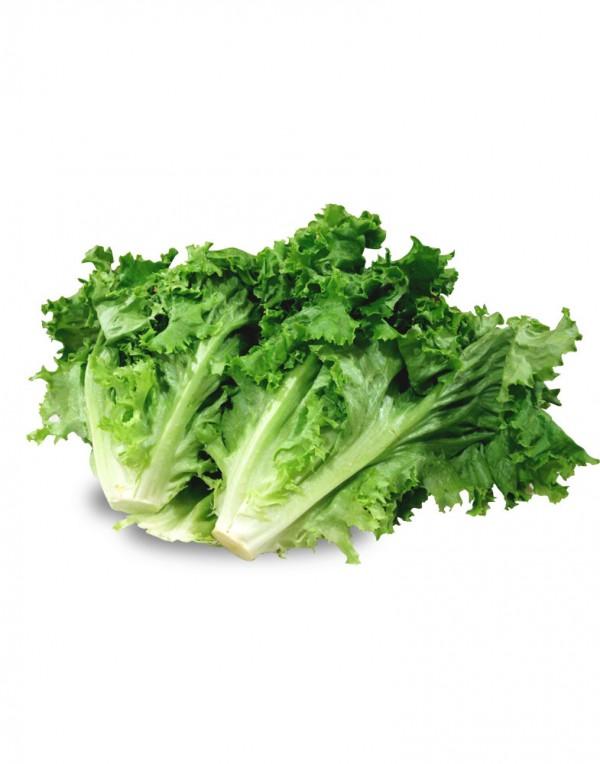 卷生菜-0
