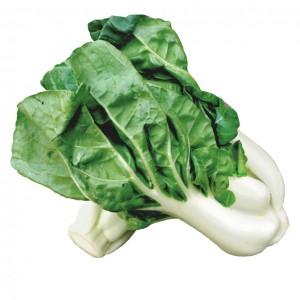 奶油菜心-0
