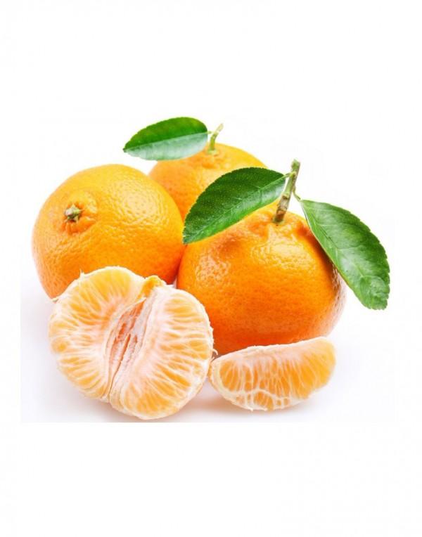 大蜜桔(蜜橘)-0