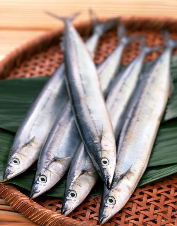 秋刀鱼-0