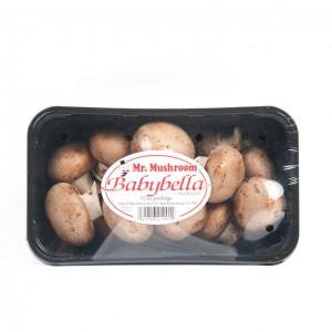黄蘑菇(盒装)-0