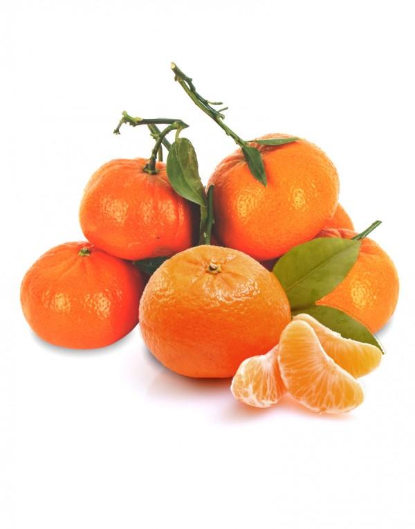 有叶蜜桔(蜜橘)-0