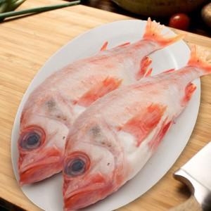 大眼红鱼-0