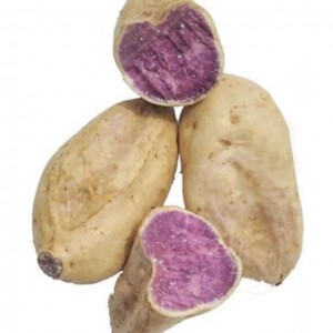 紫番薯 1.8-2lbs-0