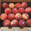 水蜜桃(大) 整箱 约33个-0