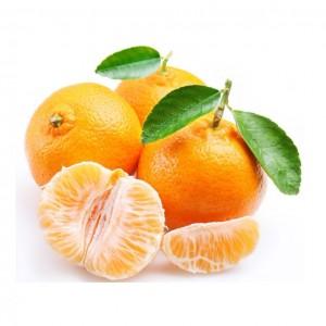 砂糖橘 包甜-0
